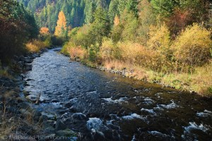 Tucannon River Umatilla National Forest, Blue Mountains, WA