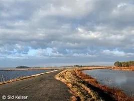 Blackwater Refuge Wildlife Drive