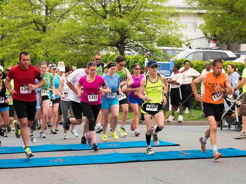 Great Chesapeake Bay Wellness Race