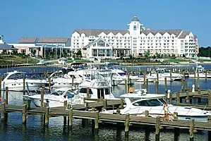 River Marsh Marina at the Hyatt