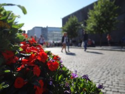 The main square by the Cathedral.#regionstavanger Photos by: Carmen Cristina Carpio Tobar / Kjell Anders Pettersen