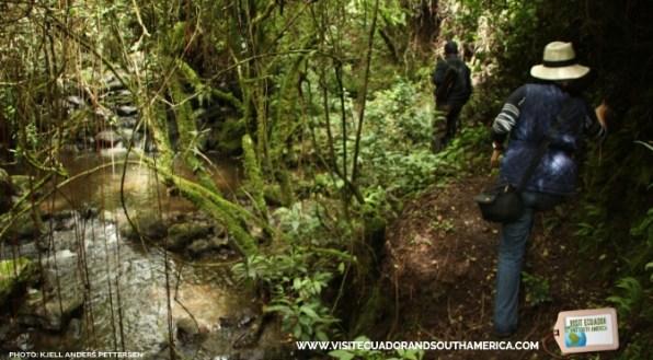 Hacienda Las Cuevas by visitecuadorandsouthamerica.com 13