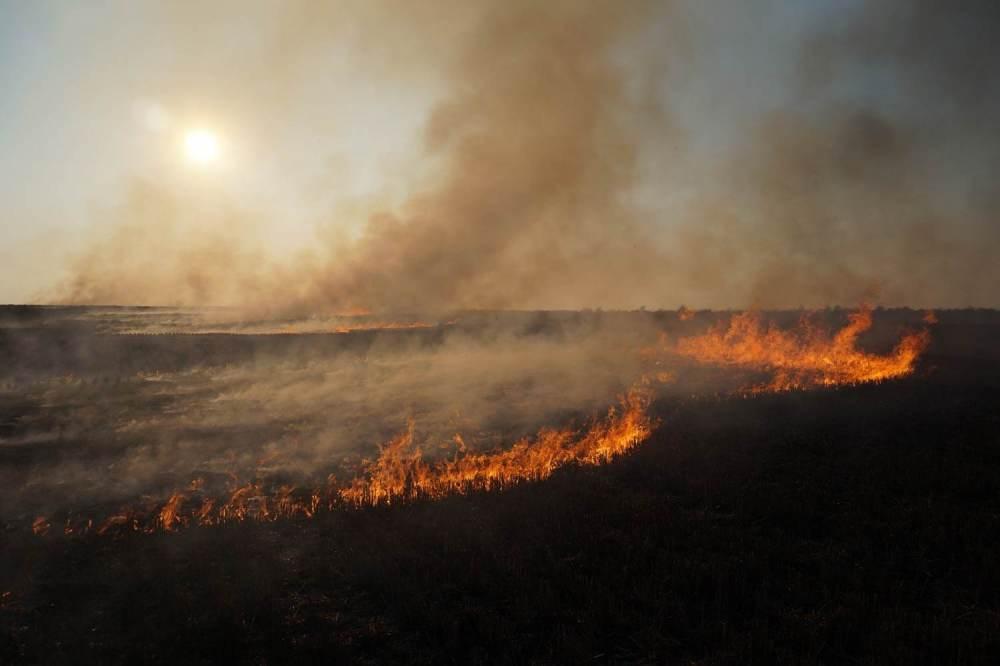 prairie-burn