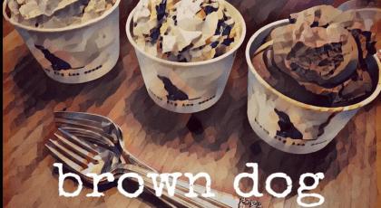 brown dog ice cream