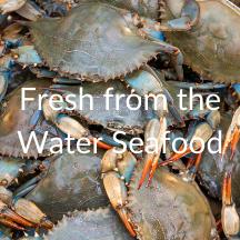 seafood visitesva