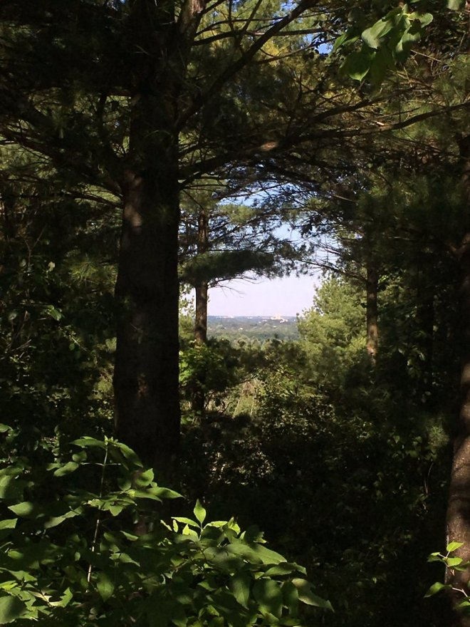 Starkey Hill