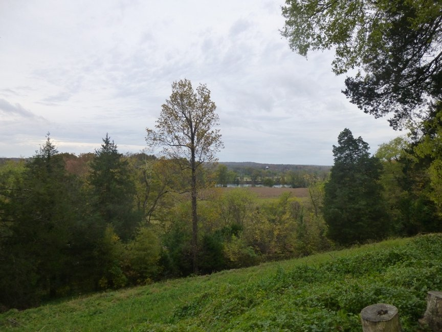 fall blog 10
