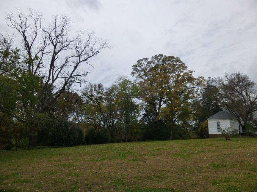 fall blog 5