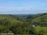 Powys_-Teme_Valley