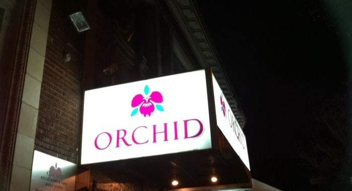 Orchid in Koreatown