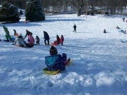 480 sledding 1 Feb. 2013 by staff