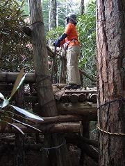 乙女の森の高台