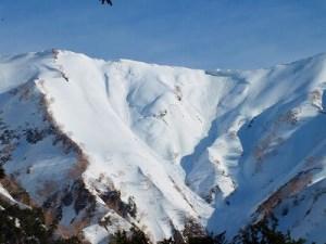 爺ヶ岳登山→扇沢スキー滑降《残雪期》