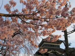 2010/04/09 17:30~国宝松本城