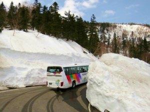 乗鞍岳・春山バスの運行が始まります!