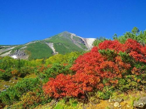 乗鞍岳の紅葉が、一気に色付いてきました!!