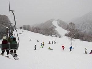 滑雪季節來囉!!【JR松本站免費接駁車】前往【乘鞍滑雪度假村】!
