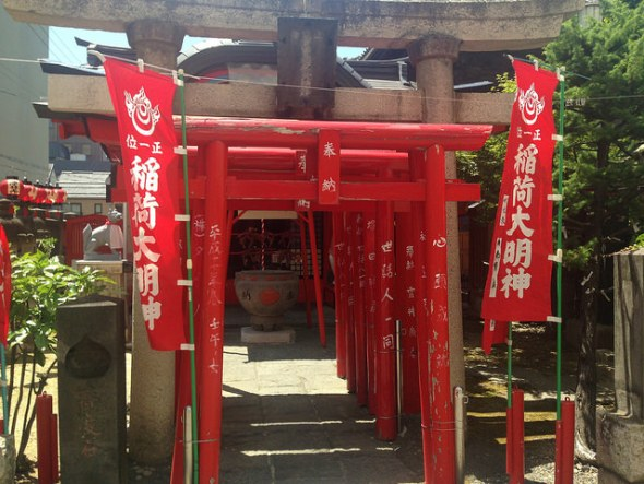 The path through the torii gates