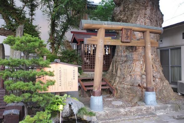Hidden Matsumoto: Tsukiizumi Shrine and Its Natural Spring