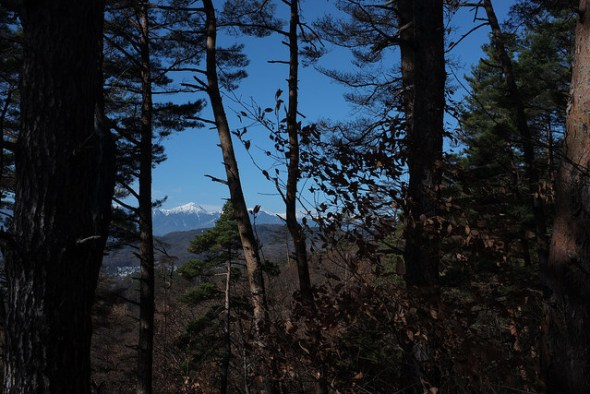 The Japan Alps peaking through the trees.