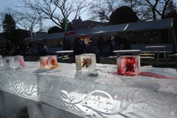 icefestival7