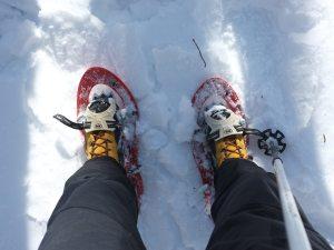 Снегоступы