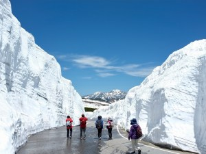 Snow activities (May–Jun: Snow walls / Dec–Mar: Ski resort)