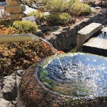 辰巳の庭の井戸