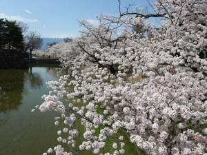 Matsumoto Castle Area