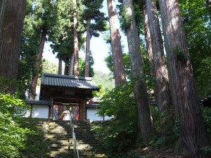 Take a Stroll to Kotakuji Temple
