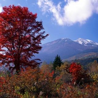 Norikura Highlands