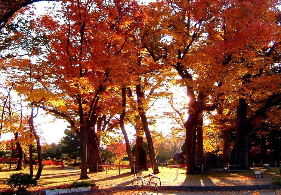 Agatanomori Park