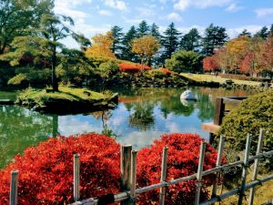 Autumn in Matsumoto: No Crowds, Just Colors