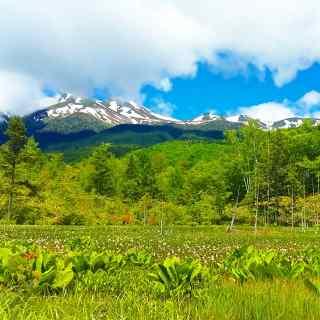 Norikura : Que la nature est belle!