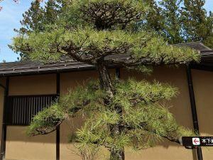 生誕150周年記念企画展「『木下尚江』という生き方」