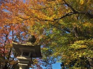 岡宮神社の紅葉 「松本城ウォークの印所」