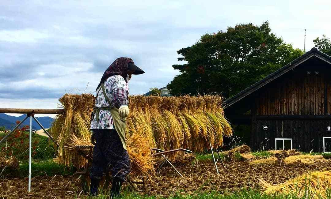 Respecter la vie rurale locale