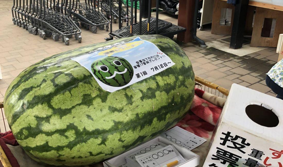 农贸市场:惠之乡(松本市今井)