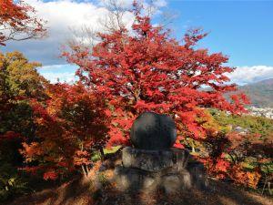 隠れ紅葉スポットー松本最古の城址公園 城山公園-