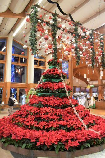 Weihnachtsbaum Eingangshalle