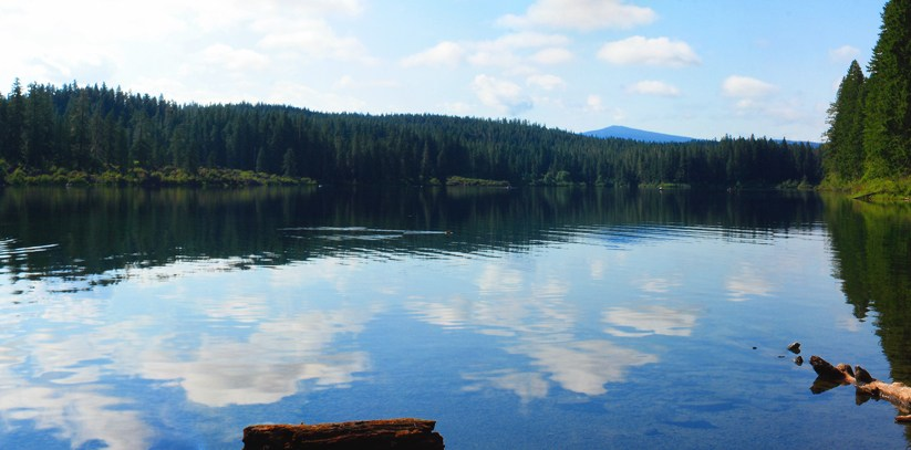 Clear lake for Clear lake oregon fishing