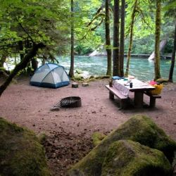 Mckenzie River Area Campgrounds