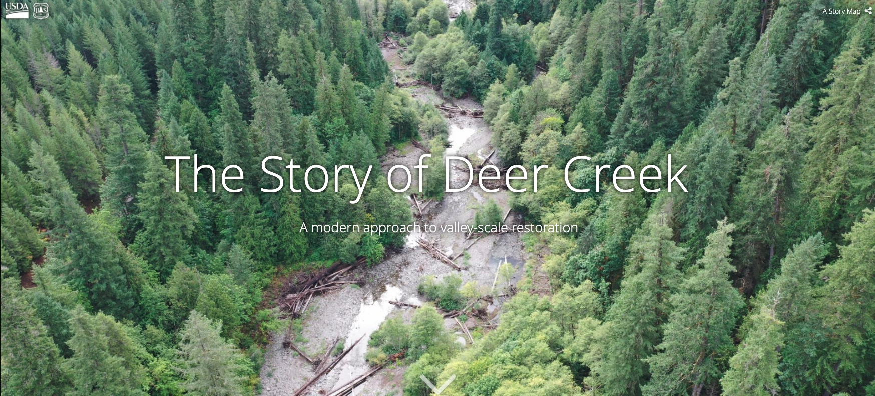 deer creek restoration - mckenzie river, Oregon
