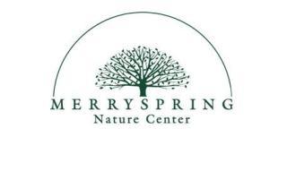 merry-spring