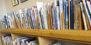 Shelf of Children's Books Mount Vernon Public Library Cole Library