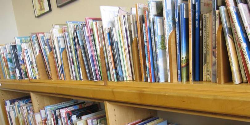 Shelf of Children's Books Mount Vernon Public Library Cole Library