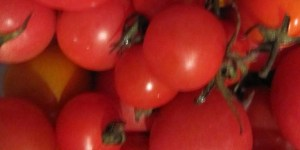 Fresh Local Cherry Tomato