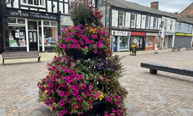 Summer planting brings colour to Northwich