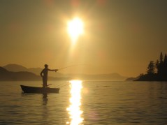 Silhouette of man in small, open boat fly fishing on the west coast of British Columbia, Canada. Thormanby and Texada Islands in distance, shoreline of Halfmoon Bay on the Sunshine Coast to the right. Look closely and the shiny fishing line is glistening gold above the fisherman and his boat.