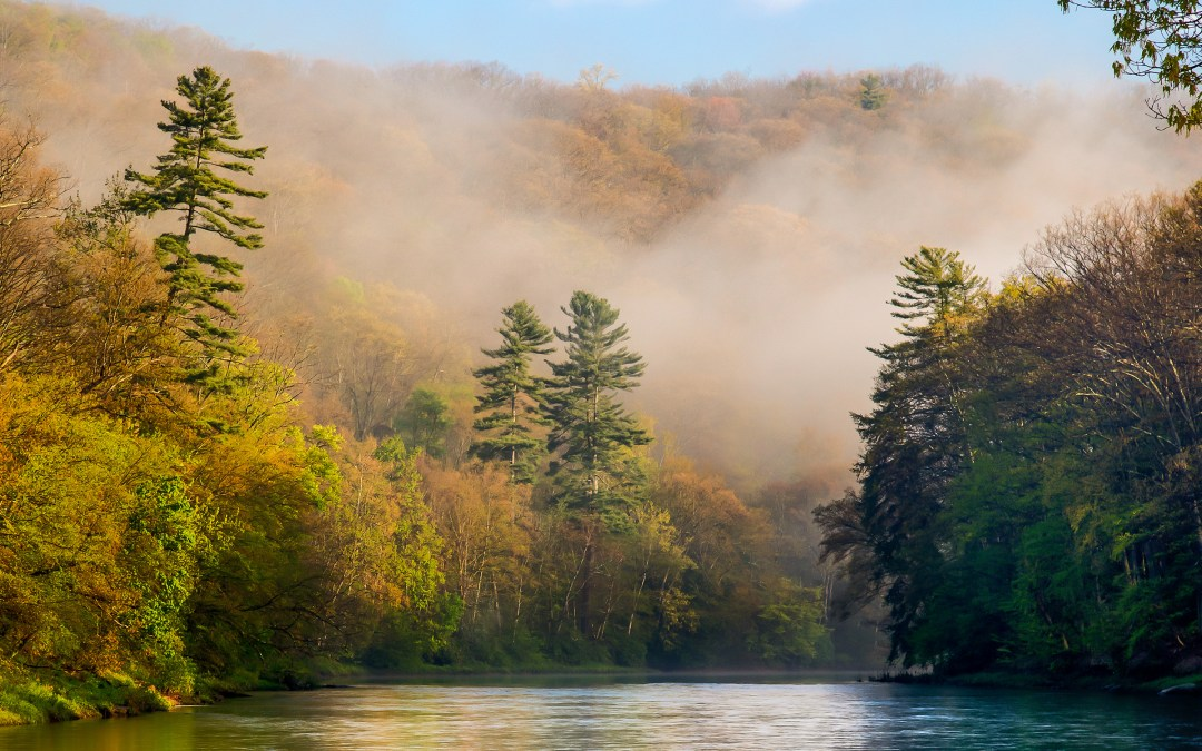 Clarion River To Be Honored in 2019 on Postage Stamp